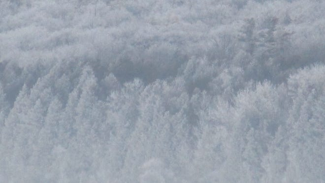 Tuesdays frost on Peninsula Park bluffs as seen from Fish Creek. The wind and fog brought in mime frost that looks like little caterpillars.