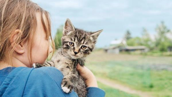 Pets can be delightful and improve our health -- but they can cause illness in humans, too.