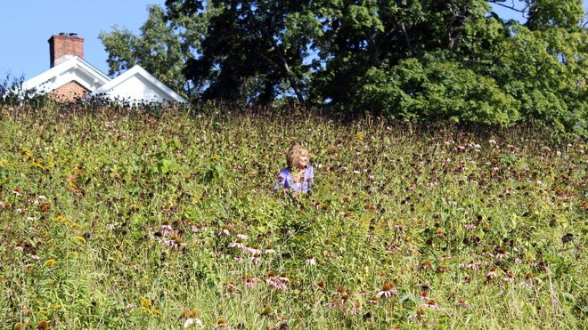 Kathy Smith sits in her hillside meadow in September as summer fades.