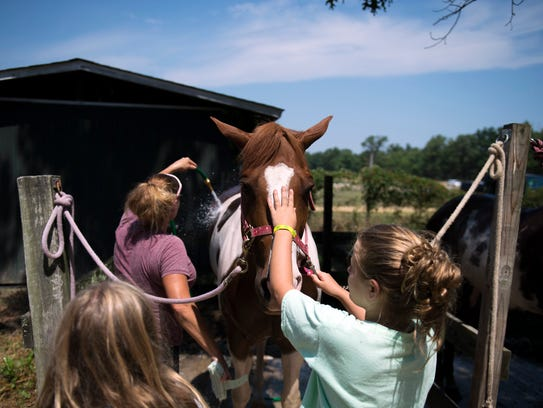 4-H member Payton Wilford, right, pets a horse as it
