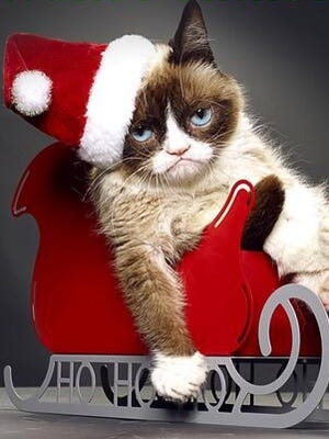 "Grumpy Cat will star in ""Grumpy Cat's Worst Christmas Ever."""