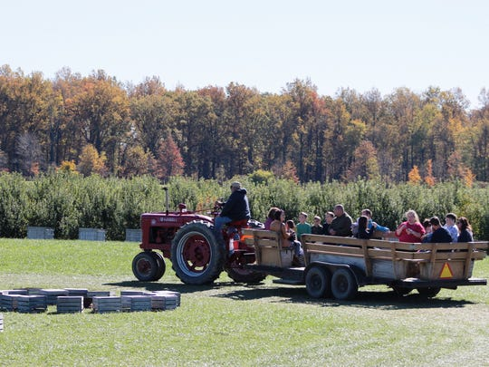 One of the many fall-themed activities drawing crowds to Lynd Fruit Farm this October.