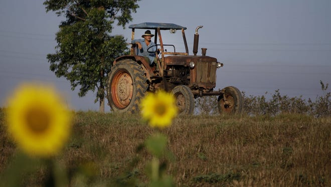 In this Feb. 22, 2011 file photo, a farmer drives his tractor in Pinar del Rio, Cuba. The Obama administration has approved the first U.S. factory in Cuba in more than half a century, allowing a pair of former software engineers from Alabama  to build a plant assembling as many as 1,000 small tractors a year.