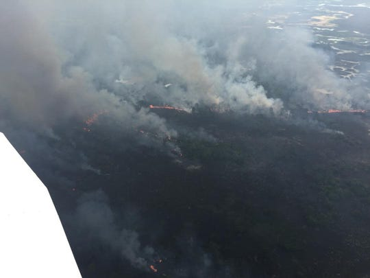 Florida Forest Service officials are battling a wildfire in Big Bend Wildlife Management Area in Taylor County. The was fire started Sunday by a lightning strike.