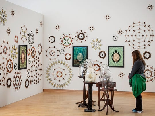 Jennifer Angus of Madison created a fascinating installation of insects pinned directly to walls in repeating patterns for the Super Natural exhibition. Titled Secret Lives, the work includes printed roundels and glass bell jars where insects reign supreme and are caught in the act of performing simple tasks.