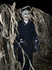 A haunted corn maze at Willow Springs Garden.