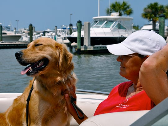 Hop in a boat and take your pet to dog friendly Keewaydin Island.