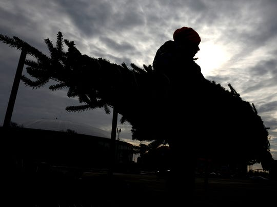 Heather Roach, of North Countree Christmas, Inc., Wausaukee, helps unload trees donated for the Trees for Troops program, at the Lambeau Field parking lot, Tuesday, December 2, 2014.