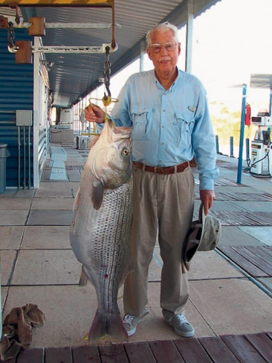 Joe Ford, 80, stands with the 54-pound striped bass he pulled out of Elephant Butte on June 3. Ford was on an annual fishing trip with his son and grandson when he caught and released the fish.