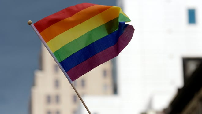 A file photo of a rainbow flag during an annual gay pride march.
