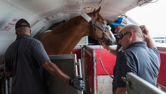 Aa temporary inclosure is built around Kentucky Derby winner Justify after being placed on a plane to Baltimore for the Preakness Stakes. May 16, 2018