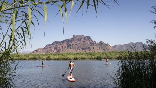 Paddle boarding on the Salt River near the Granite Reef Recteation Site.