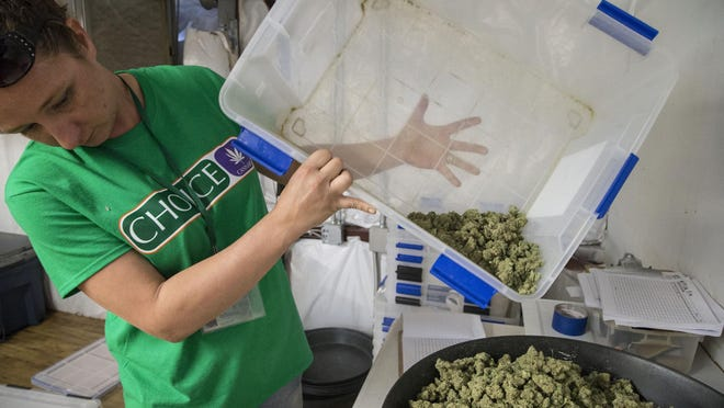 In this file photo, Jodi Lenz prepares medical marijuana for packaging at Mohave Green in Arizona. The  Cannabis Control Board last Tuesday finished discussingproposed rules and regulations related to the application process for recreational cannabis businesses.