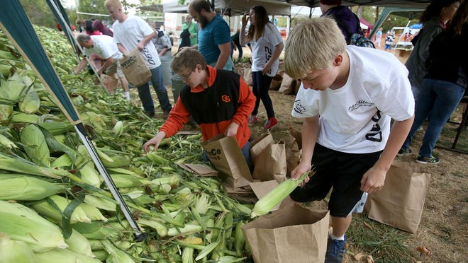 Andrew Lucke bags corn Saturday at Porter Boone Park during the Aumsville Corn Festival.