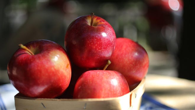 Michigan's apple crop is abundant this year, so get baking.