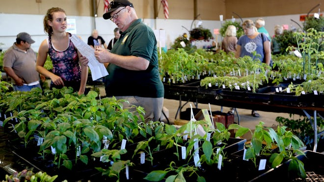 There will be more than 10,000 plants for sale at this weekend's Master Gardeners Plant Sale.