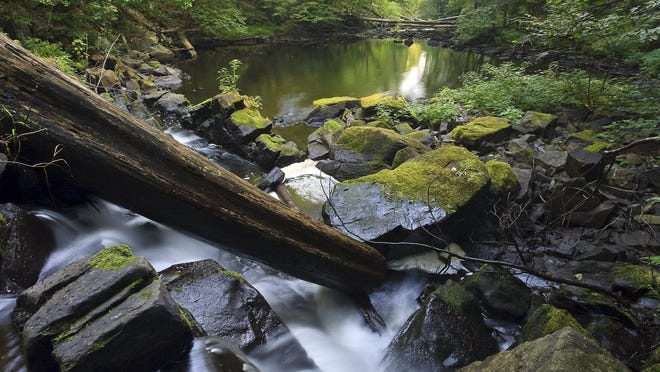 Black Creek, which runs through Scenic Hudson's Black Creek Preserve in Esopus, boasts beautiful scenery. Scenic Hudson is working with public and private partners to create a 9-mile trail for hikers, paddlers and bicyclists along the creek. The project would be another link in the Greenway Trail.