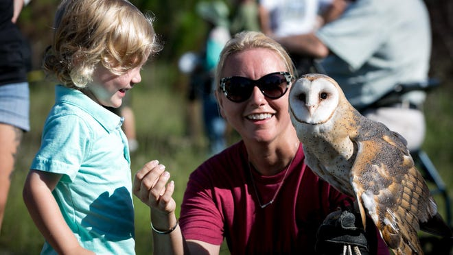 Busch Wildlife Sanctuary Executive Director Amy Kight shows Weston Kronberger, 2, of Palm Beach Gardens, a barn owl named Athena, before the release of three gray fox kits into the wild in the Cypress Creek Natural area in Jupiter on Thursday, August 8, 2019.