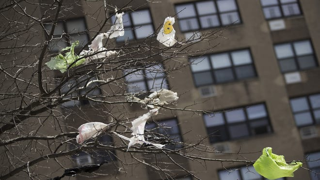 Plastic bags are seen tangled in the branches of a tree in New York City's East Village neighborhood.