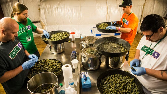 From left to right: Richard Devine, Jessie Hart , Kris Mora and David Ulibarri cleaning out Marijuana buds after their harvest at Mohave Green's Choice Cannabis indoor grow operation, located at undisclosed location in Mohave Valley. The operation spans 14,000 square feet across two levels.