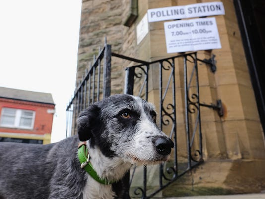 dogs_polling_stations_062316