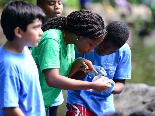 Josiah Johnson, a group leader of a summer educational program, looks with students at macroinvertebrates collected from the Passaic River on Friday. Nakeia Wimberly, a first-grade teacher involved with the program, won a scholarship to attend an environmental education conference in Puerto Rico this fall, along with the Sarah Sterling-Laldee, supervisor of science for Paterson schools.
