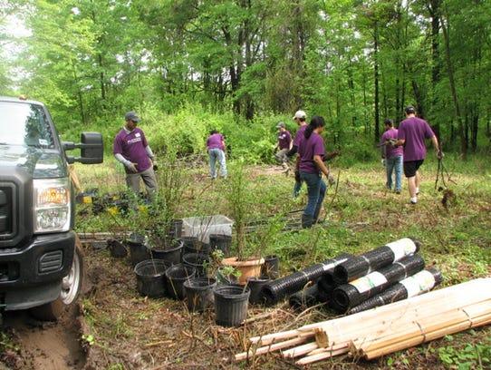 Volunteers maintain trails at Washington Valley Park