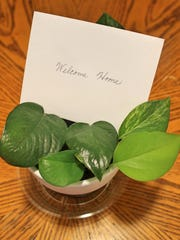 A handwritten note tucked into a potted plant gives