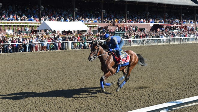 American Pharoah, with George Alvarez up, galloped in front of a packed grandstand at Saratoga.
