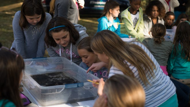 A group of students look eagerly into a tub of water before the program starts.