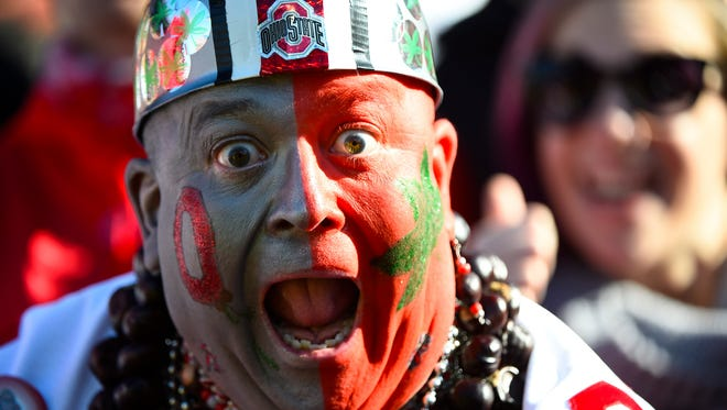 An Ohio State fan reacts against the Illinois Fighting Illini at Memorial Stadium.