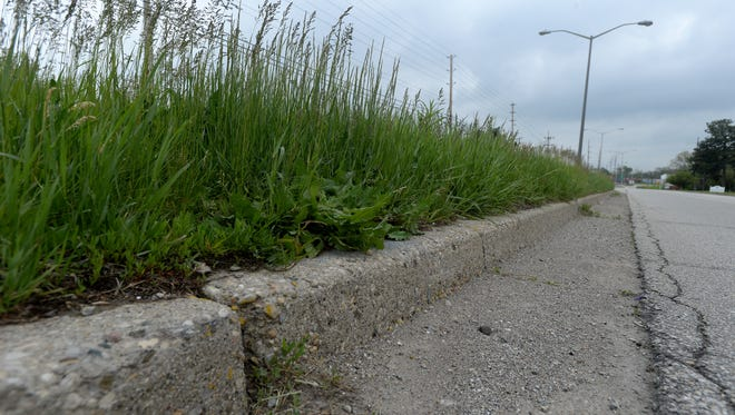 Tall grass in the median on Williamsburg Pike on Thursday in Richmond.