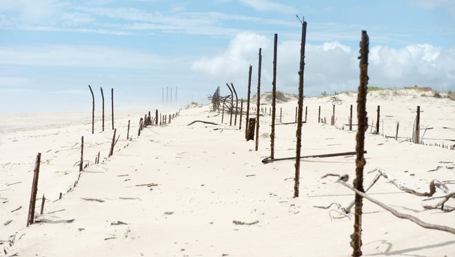 A view of the dune near Savage Ditch where the Berenty's found the message in a bottle with the Indian River Inlet Bridge in the background where the bottle was dropped in the background on Tuesday, May 31.
