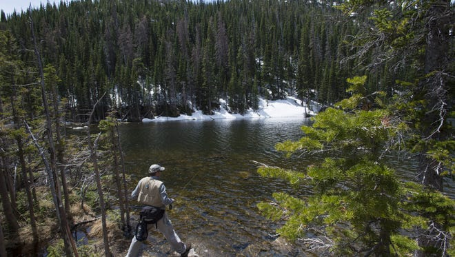 Pete Deal, visiting from West Virginia, uses a fly rod to target Greenback Cutthroat trout at Dream Lake in Rocky Mountain National Park Wednesday, June 8, 2016.