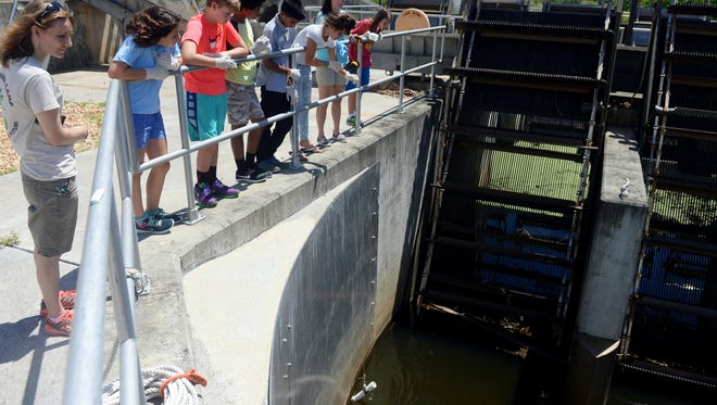 Indian River County's Summer Camp for a Sustainable Future visited a stormwater structure in south Indian River County in July 2016 to learn about stormwater and how it affects the Indian River Lagoon, recycling and beach health.
