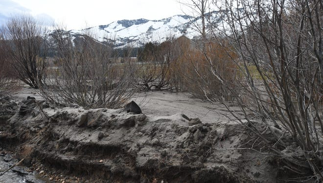Mud flows from the Little Valley Fire site send sand and gunk onto the fields of the Black Gold Arabian Ranch when it rains. Photo taken Feb. 9, 2017.