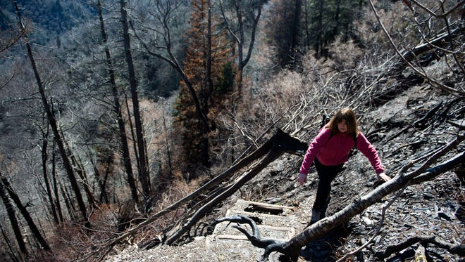 Rhonda Blether, editor of the Mountain Press carefully makes her way towards the rock faces of Chimney Tops trail during a media tour Thursday, Feb. 16, 2017. To her left is a remnant of the trail from before the November wildfire. The trail is closed to the public due to November's wildfire damage and will remain closed through 2017.