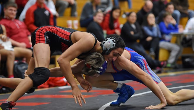 Hillcrest's Michael Shiffer, left, is the No. 1 seed in the Upper State in the 106-pound weight class in Class AAAAA in this weekend's state tournament at the Civic Center of Anderson.