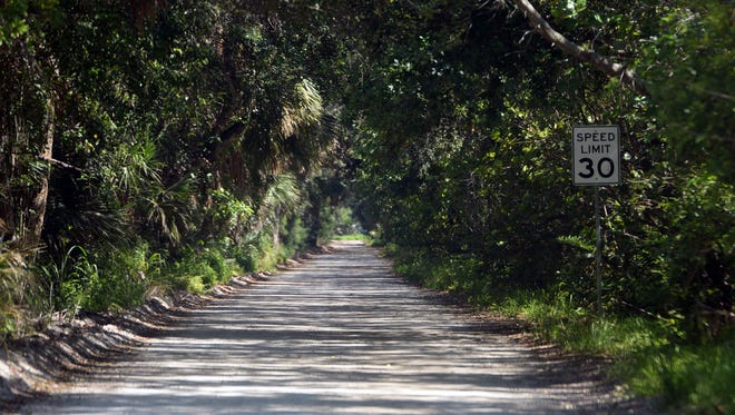 The north section of the Jungle Trail, between Indian River County Road 510 and Pelican Island National Wildlife Refuge on Orchid Island, is on the National Register of Historic Places and is open to foot and automobile traffic. New signs at the entrance will alert drivers of bicyclists and pedestrians, county officials said Tuesday.