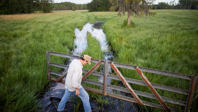 Rocky Scofield, one of the brothers who run Half Circle L Ranch, opens a gate on the land proposed for sale to Conservation Collier, on Friday, Aug. 18, 2017, in Immokalee.