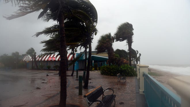 The wind rips through Sexton Plaza on Sunday, Sept. 10, 2017, as Hurricane Irma approaches the Treasure Coast. Along with increasing winds, rain and storm surge are expected through Monday.
