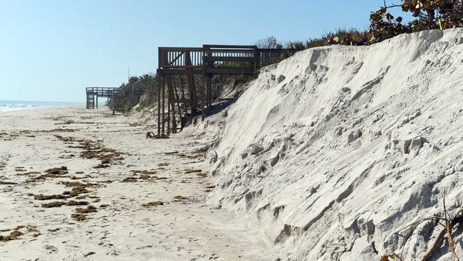 Just a few days after Hurricane Irma passed over the Treasure Coast, county and environmental officials took to the beaches to determine how much erosion happened. Along with the dunes, sea turtle nests were especially vulnerable to the high wind and surf brought by the storm.