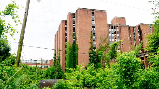 Underbrush begins taking over the Knoxville College campus, the old Martin Luther King Towers can be seen falling into disrepair in the background in Knoxville, Tennessee on Friday, June 1, 2018.