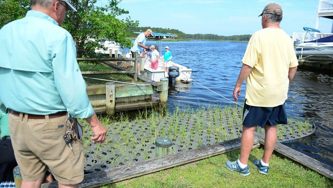 One-hundred and thirty floating treatment wetlands will be placed along bulkheads in many of South Bethany's canals to help treat stormwater runoff from up to 345 acres of surrounding land on Tuesday, June 19, 2018.