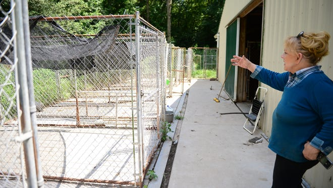 Linda Brown shows her outdoor dog kennels and property where Animal control officials seized 40 German shepherds from her property on Hayward Road in Somerset County on Thursday, July 19, 2018.