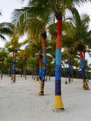 Yarn-bombed palm trees on the Riviera Maya.