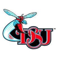 DSU logo.jpg