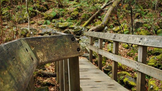 A trail in North Carolina.