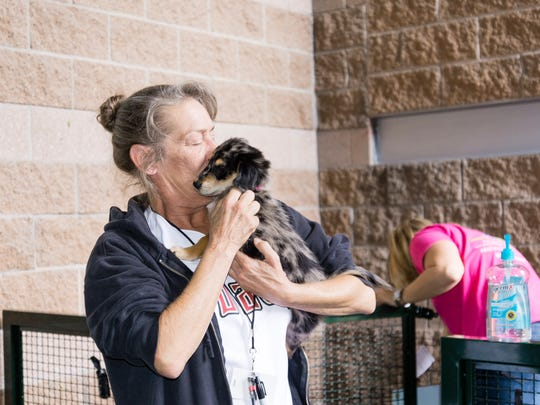 Nearly a World Record!  858 dogs attended the Arizona Diamondbacks vs. Colorado Rockies game in Phoenix at Chase Field on Sunday, May 1, 2016.