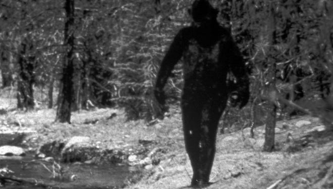 This is a 1977 still photo made from a 16mm film made by Ivan Marx reportedly showing the legendary Big Foot cavorting in the hills of northern California.